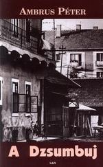 A Dzsumbuj - Egy telep élete
