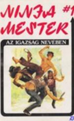 Ninja mester 1.