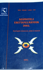 Számviteli esettanulmányok 2002.