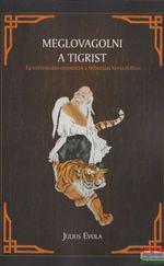 Meglovagolni a Tigrist - Egzisztenciális orientáció a felbomlás korszakában