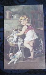 Wenau pastell antik képeslap