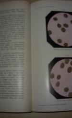 A belorvostan tankönyve 1.kötet