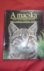 A macska (amit a kedvencünkről tudni kell)