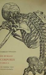 De humani corporis fabrica - Az emberi test felépítéséről