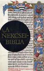 A Nekcsei-Biblia legszebb lapjai