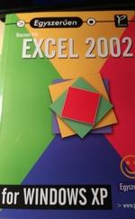 Egyszerűen EXCEL 2002 for WINDOWS P